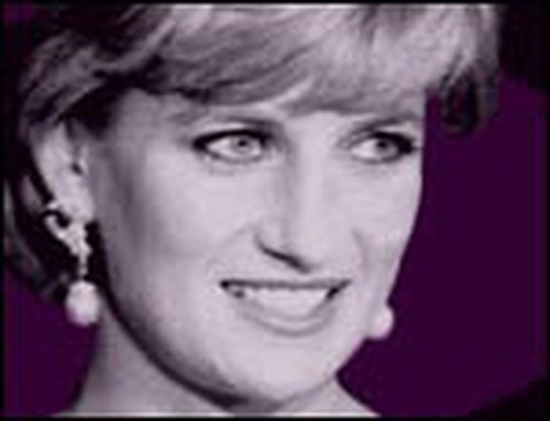 Diana - 'No shred of evidence' of murder