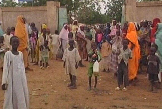 Darfur conflict - Aid agency chief arrested