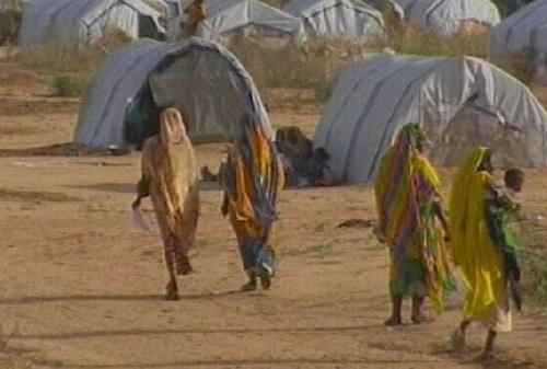 Darfur - Alleged atrocities