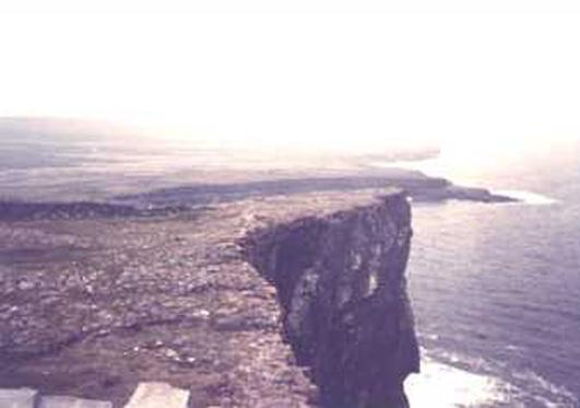 Dara Ó Maoildhia, Árainn.