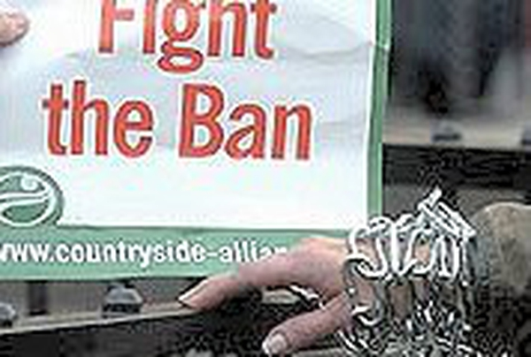 Hunting ban - Court upholds law