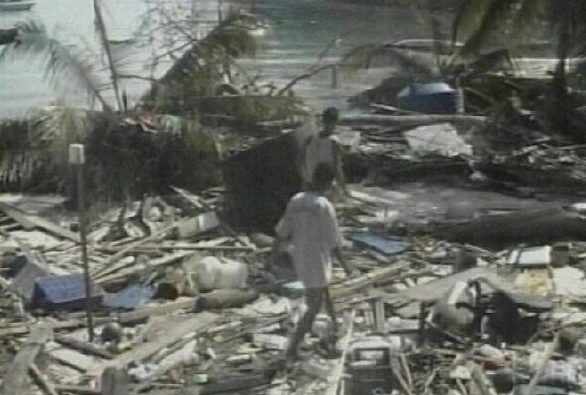 Asian tsunami - UN survey