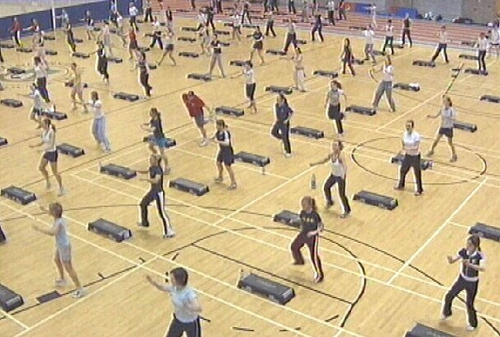 Fitness - Report critical of PE facilities
