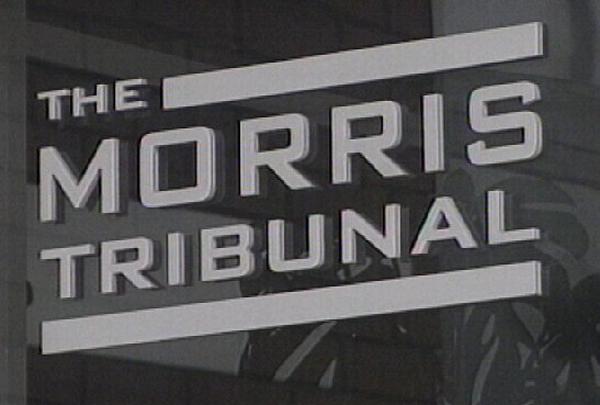 Morris Tribunal - Garda admits mistreatment