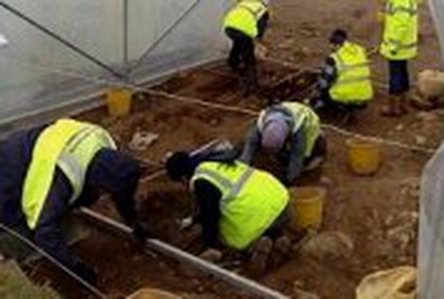 M7 motorway - Archaeologists at the site