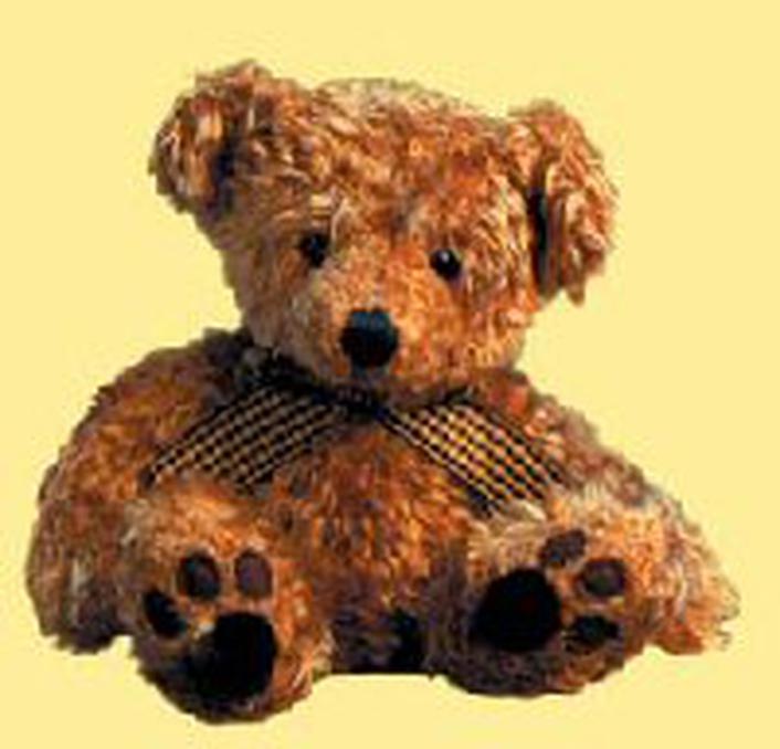 The First Teddy Bear