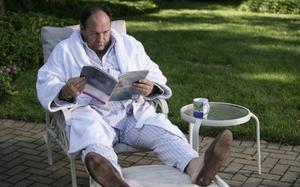 James Gandalfini as Tony Soprano