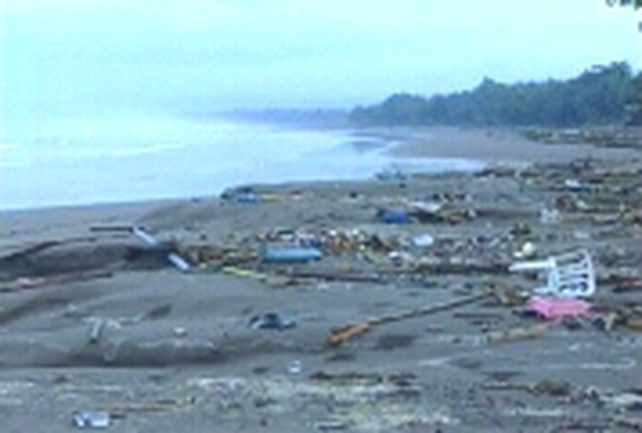 Java - 650 killed by tsunami