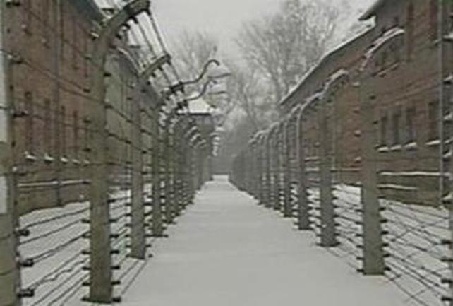 Auschwitz-Birkenau - Anniversary of liberation