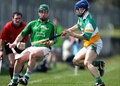 Limerick 6-20 Offaly 1-18