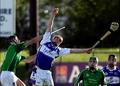 Limerick 3-15 Laois 1-13
