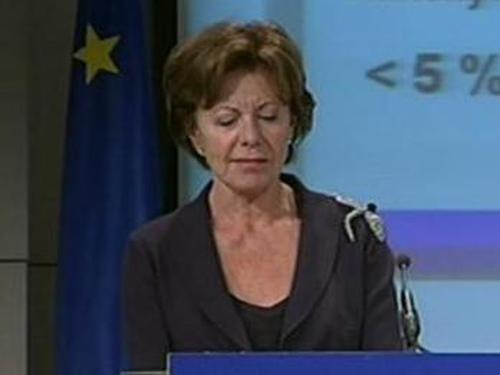 Neelie Kroes - Banks to be broken up?