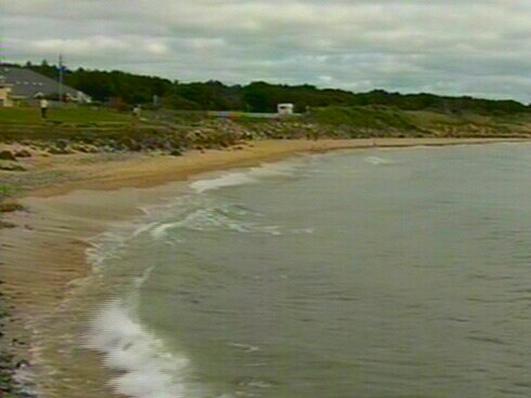 Clean Coasts Week 2014