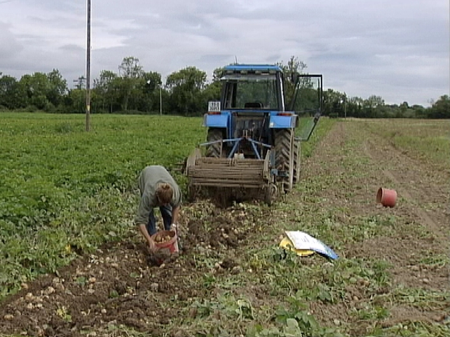 Farming - Good deal for Irish farmers, says Smith