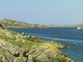 Mícheál Ó Cionna, Stiúrthóir Bainistíochta Killary Fjord Boat Tours & Marty Keaney, iar-scipéir an bháid.