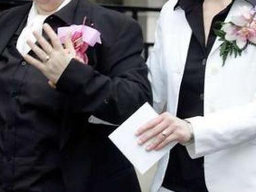Civil partnerships - Motion critical of Govt plan