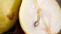 Poached pears in honey and cardamom - A rich and tempting summer desert