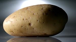 Potato prices up 4.4% in September