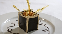 Dark Chocolate Box with White Chocolate Mousse - A little piece of heaven in these inspired treats.