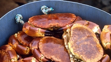 Jumbo Lump Maryland Crab Cakes