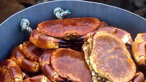 Richard Corrigan's Crab with Dressed Jerusalem Artichokes