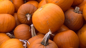 Catherine Fulvio shows you how to roast pumpkin the tasty (and easy!) way.