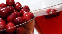 Cranberry Cheese - A tangy spread to compliment many dishes.