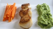 Pan Fried Scallops with Broccoli Purée