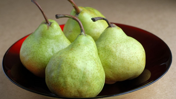 Poached Burgundy Pears with Pear Parfait and Sorbet: Kevin Thornton