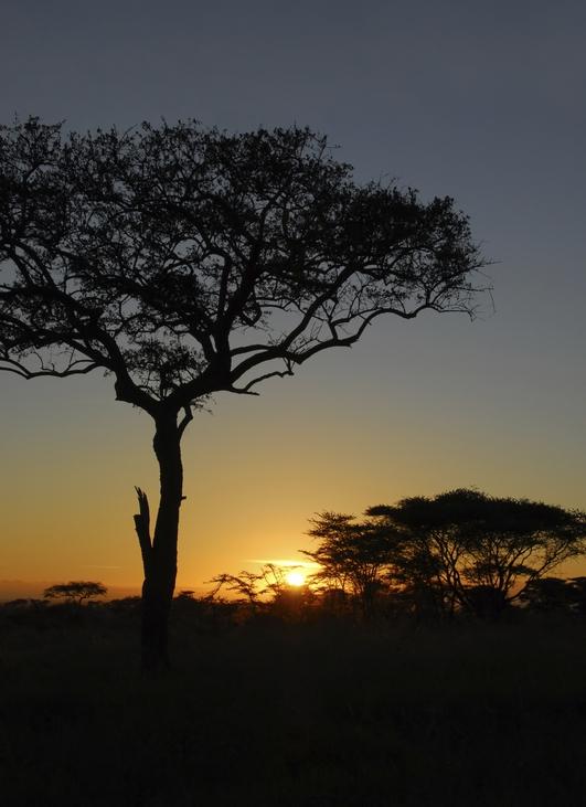 Saving Lives in Tanzania