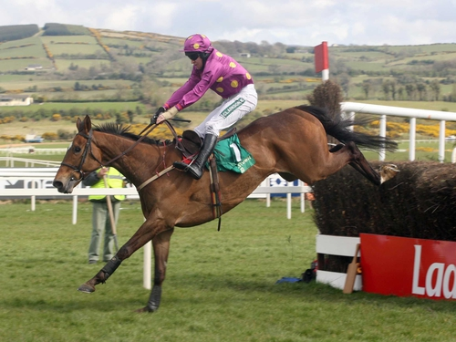 Big Zeb was a comfortable winner at Fairyhouse