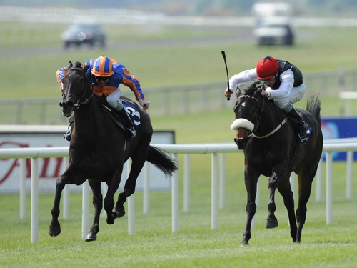 Halfway to Heaven (left) took the Sun Chariot Stakes at Newmarket