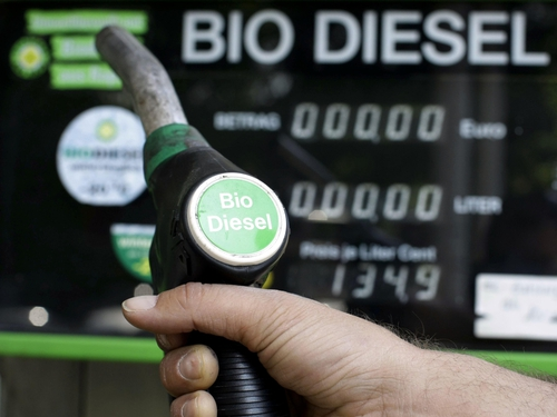 Biodiesel - Duties to last for six months