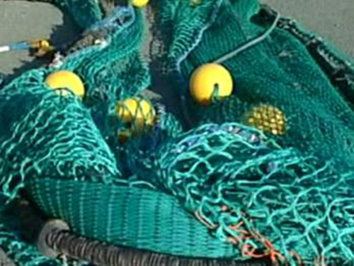 Fishing - Regime to prevent illegal catches