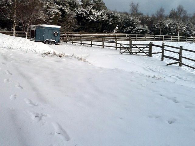 Dublin/Wicklow mountains - Heavy snowfalls overnight - (Photo: Ruairi Scollard)