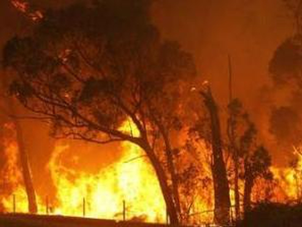 Australia - Death toll in bushfires could rise
