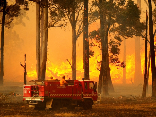 Australia - Fires are deadliest in country's history