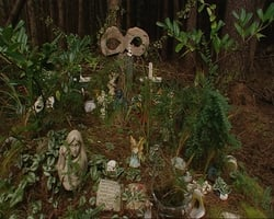 Site at Cregg Wood where Imelda & Liam Rinney & Fr Joe Walsh's bodies were found
