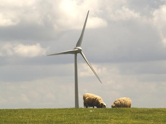 Protect Rural Ireland/Politician Row