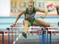 O'Rourke runs in hurdles final tonight