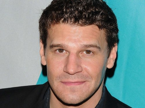 Boreanaz - Getting new co-star