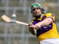 Wexford name two debutants