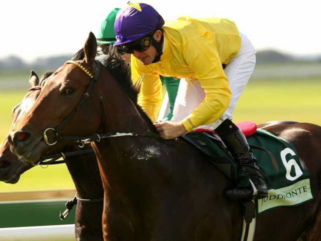 Sea the Stars delivered in a finish dominated by Irish-trained horses