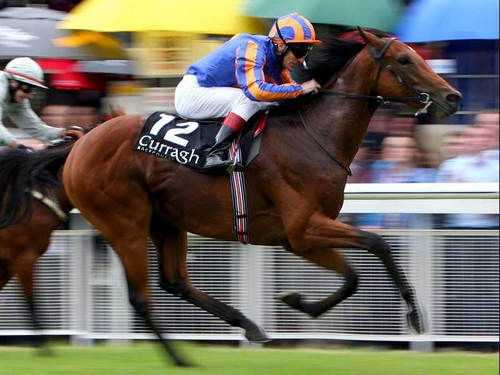 Ballydoyle's Westphalia did well to finish third from a terrible draw at Chantilly