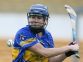 Minor camogie previews
