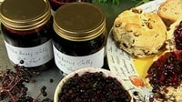 Joy's Elderberry Jelly - A new treat for your kitchen.