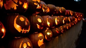 And you think aul' pumpkins are scary?