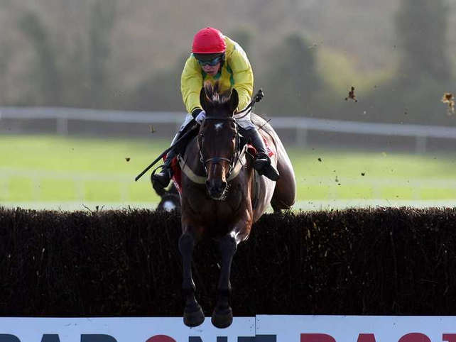 Sizing Europe is clear favourite for the Arkle Trophy