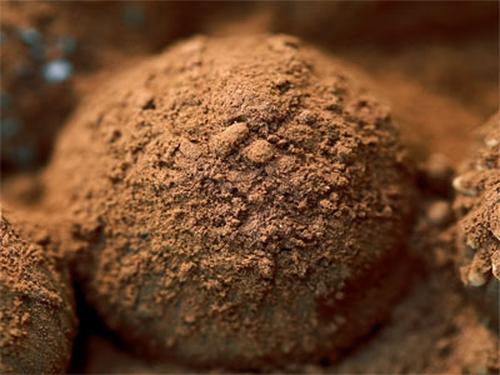 Handmade Decadent Assorted Chocolate Truffles