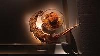 Tagliatelle con Scampi e Zucchine - A delicious pasta fish dish from Catherine Fulvio.